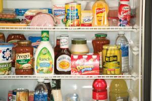 PolarMax 2118 Refrigerator   Shelves